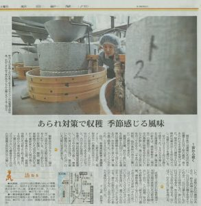 [朝日新聞(関西食百景)2016.11.19] に福井の早刈りそばについて取材いただきました。