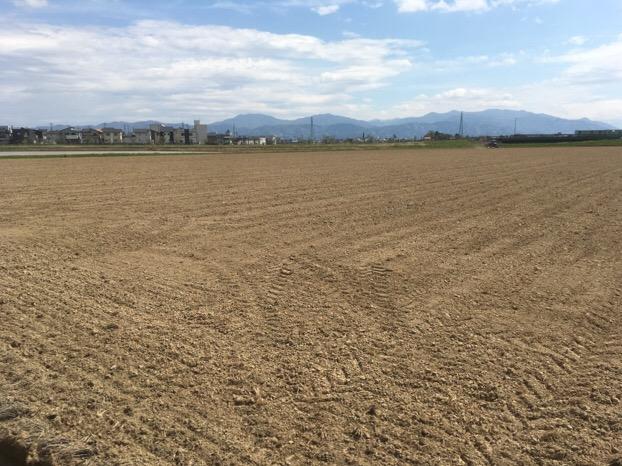 2017年ふくい夏の新そば(春まき)の播種が福井市河合地区と丘陵地のそば畑で始まりました。