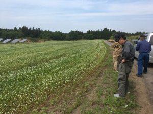【令和元年】福井夏の新そばの取材に同行しました。