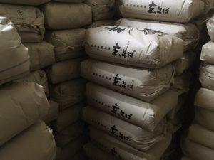 【11月1日より新そば販売開始!】令和元年 福井県大野市と福井市の早刈り新そば入荷しました。