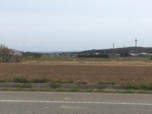 【令和2年度】福井県坂井市にて夏そば(キタワセ種)の栽培が始まりました。
